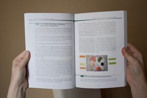 interior del libro certificado de profesional