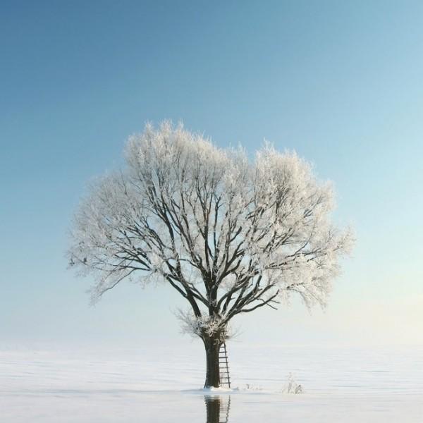 soledad y silencio para enfocarnos