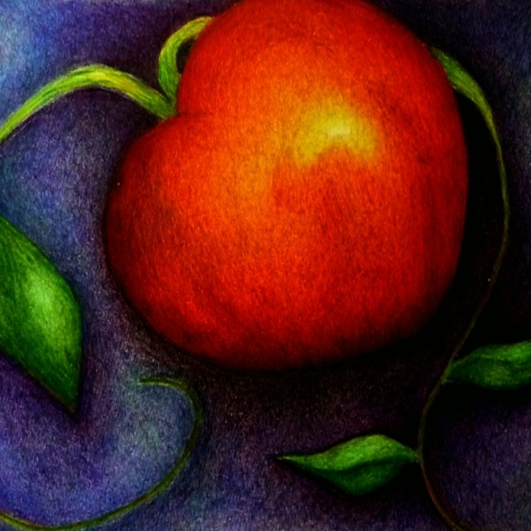Ilustración de la manzana de la curación por Citlalli H Ledward