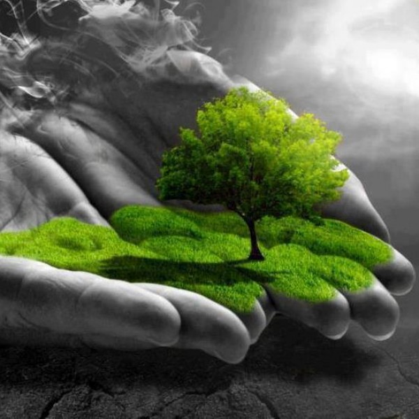 La vida en nuestras manos