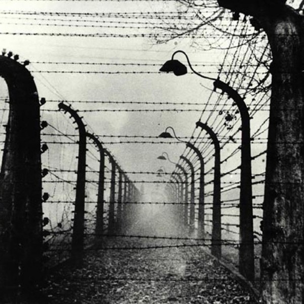 Concentration camp, Auschwitz,
