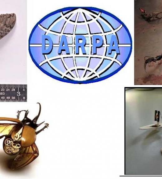La Agencia de Proyectos de Investigación Avanzados de Defensa