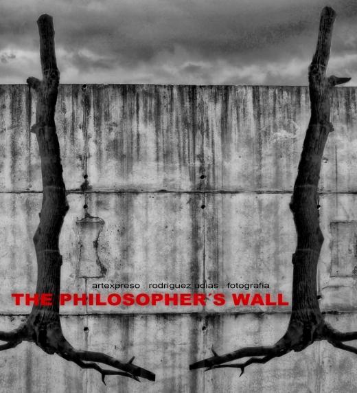 """Inhotim Collage . Minas Gerais, Brasil . Para la portada del libro """"El Muro Filosofal"""".. Artexpreso . JL Rodriguez Udias, Oct 2016"""