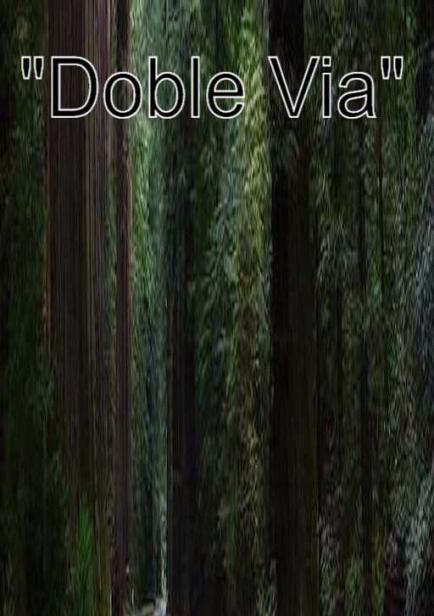 Doble vía por Xavier Ayala Andaluz