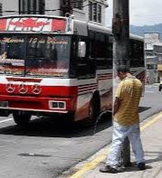 Educación, cultura, servicios sanitarios y mas cosas faltan en El Mundo Guanaco.