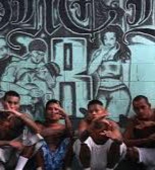 El dinero de las drogas compra funcionarios, diputados, alcaldes y hasta exportan este producto que da mala imagen al Mundo Guanaco.