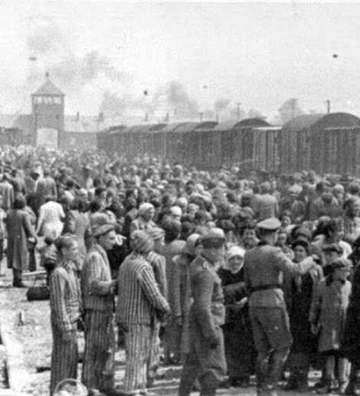 Fui empujada hacia un vagón inmundo en el que cientos de rastrojos de personas habían sido confinadas como ganado yendo al matadero.