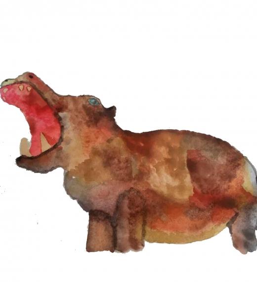 Hipopótamo sonriendo. Ximena Jasso. Acuarela sobre papel
