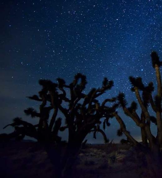 Yvettey Daryl huyen de sus perseguidores y se esconden en el desierto.