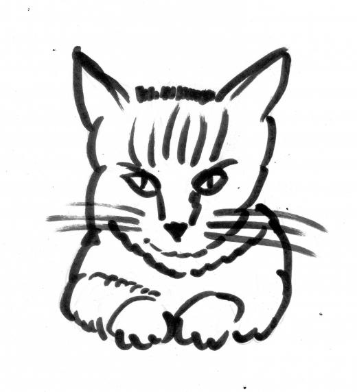 Gato atento a una conversación, así como miran los gatos, como si lo supieran todo y no dicen nada.