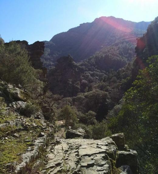 """Las Batuecas es un espacio natural del sur de la provincia de Salamanca y norte de Cáceres. Allí se compusieron algunos poemas de """"En el árbol de mis sueños"""". Es un lugar muy apropiado para la meditación y los largos paseos."""
