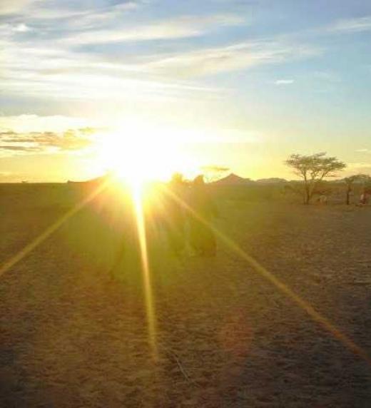 """Vivir en el desierto del Sahara implica una forma de existencia apegada a la tierra, sin artificios. Allí elaboré la estructura de """"En el árbol de mis sueños"""", en la tranquilidad y la paz de los días sin fin."""