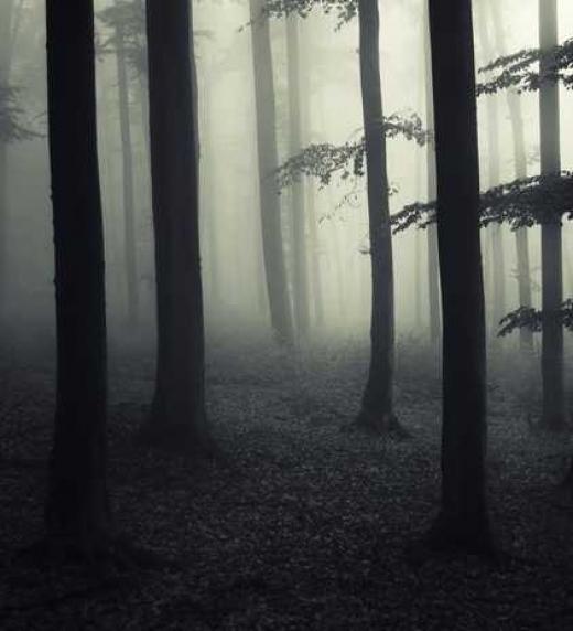 Las almas perdidas suelen vagar por parajes oscuros...
