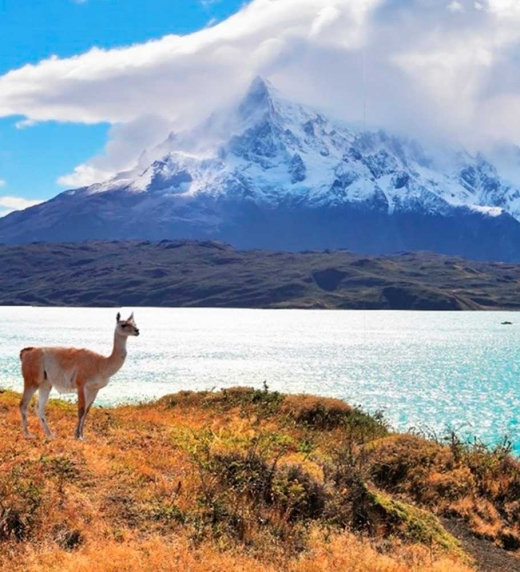 Chile es otro de los países por visitar.