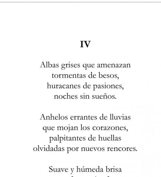 Poesía perteneciente al libro Bajo el Manto de la Luna.