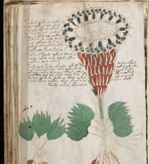 El Manuscrito Voynich es un libro ilustrado, de contenidos desconocidos, escrito por un autor anónimo en un alfabeto no identificado y un idioma incomprensible, el denominado voynichés.