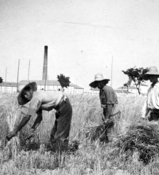 Durante el siglo XIX la estructura de la economía española siguió teniendo rasgos preindustriales: la mayoría de la población siguió viviendo de la agricultura y con unas condiciones de vida muy difíciles.