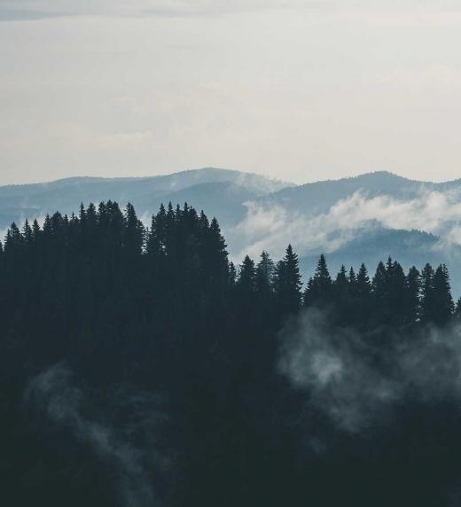 Cinco Montañas