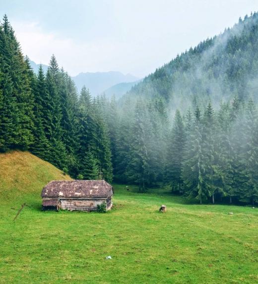 La cabaña de Deshaund y Arabella... ¡qué pequeña gran vida!