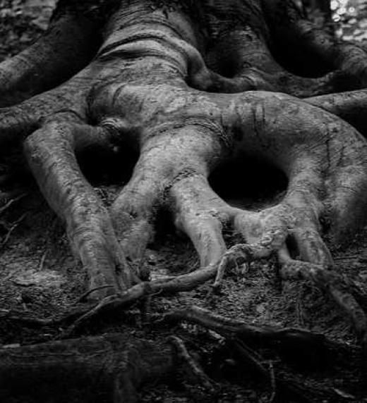 Soosmet, el hijo de la tumba (Editorial Adarve, 2020)