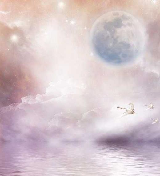 El lamento de los cisnes: preludio de tormento. Editorial Adarve, 2020
