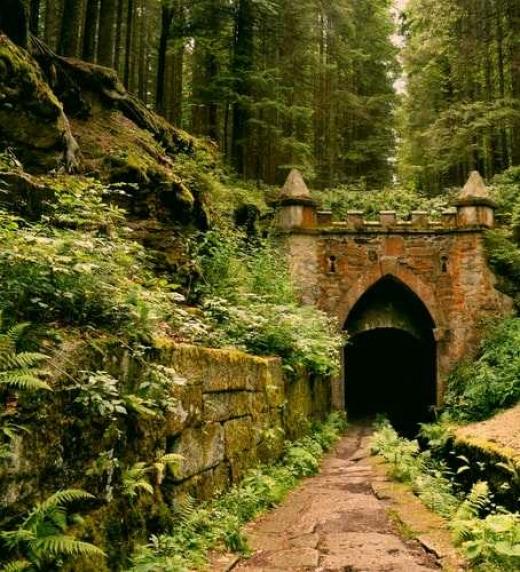 Puente hecho de piedra en el medio del bosque.