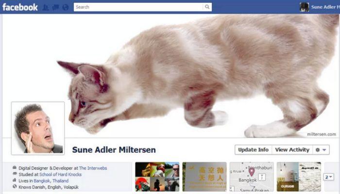 gato amenazando a facebookero