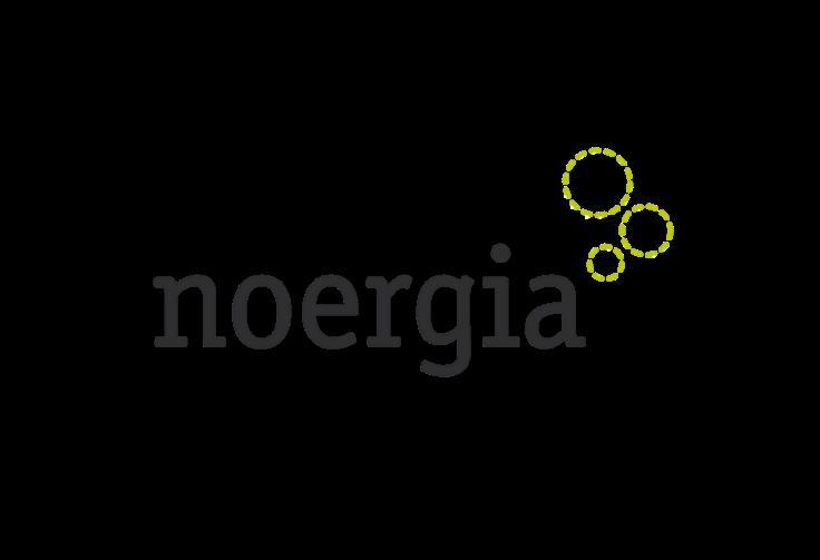 Noergia | Servicios de marketing digital